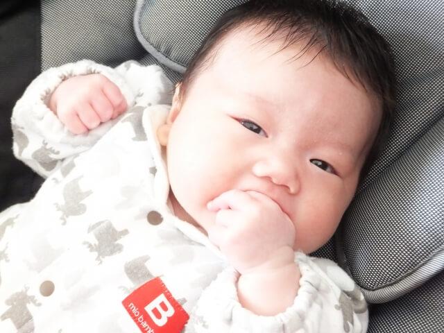 8週目 赤ちゃん